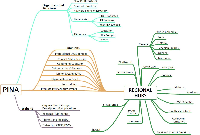 PINA Organizational Structure